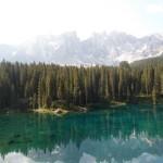 bjerg skov vand