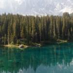 bjerg skov vand2